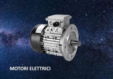 motori elettrici inverter
